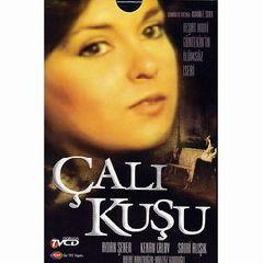 "Calikusu (""Королек - птичка певчая"")"